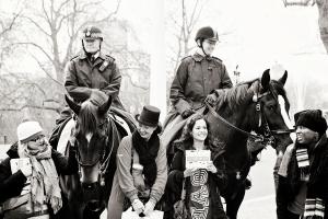 honkopoly horses!!!