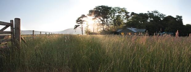 Bleasdale-tents (3)