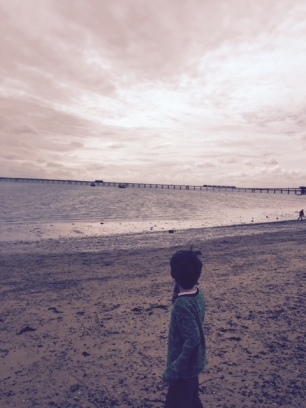 freddie beach southend